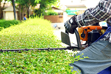 Asan Garten- und Landschaftsbau - Kategoriebild: Garten- und Objektpflege